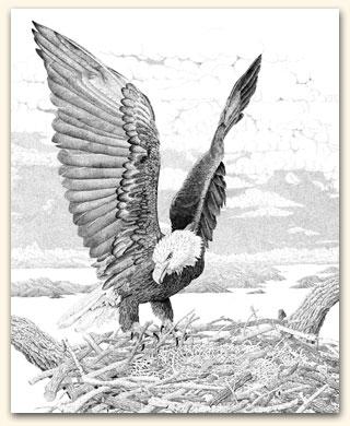Freedom of Flight IV